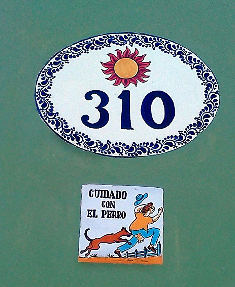 Detalles y Ocurrencias de Ciudad perro cronica urbana - Detalles y Ocurrencias de Ciudad | San Juan