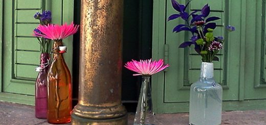 Esas cosas curiosas de San Juan / Flores en la Plaza de Armas a Flor de Piel