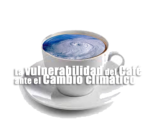 vulnerabilidad Café Cambio climático cronica urbana - Nuestro Café | Evaluacion y Vulnerabilidad | Cambio Climático